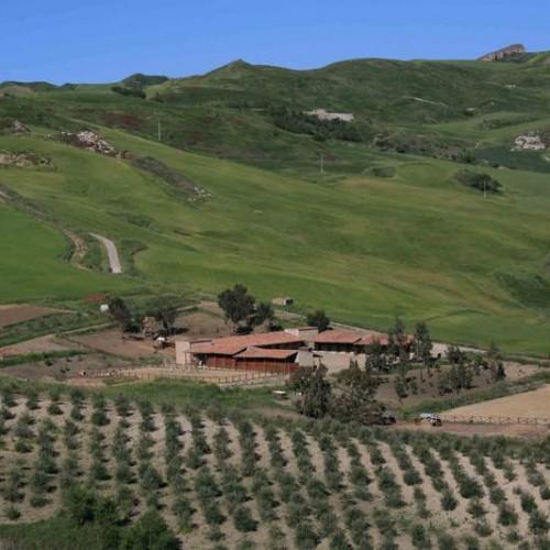 agriturismo sicilia centro maneggio centro benesserebenessere
