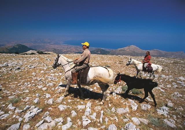 agriturismo sicilia cavalli maneggio